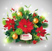 Christmas card with fir and poinsettia decoration. Vector eps 10.