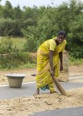Young Woman Sweeps Millet On Public Road.