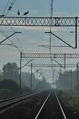 Railroad Tracks On The Embankment. Electric Railway With Pylons