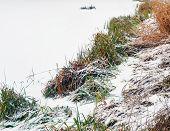 Landscape. Lakefront Winter.