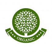 Green Circle Tree, Vector Logo Design Template. Organic Product Badge. Garden Or Ecology Icon