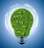 light bulb covered with green grass
