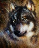 image of serenade  - Wolf painting color background on paper multicolor illustration - JPG
