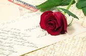 Red Rose And Letters 2