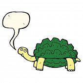 stock photo of tortoise  - cartoon tortoise with speech bubble - JPG