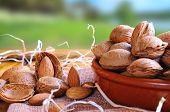 picture of shells  - Group of healthy almonds in shell and shelled exposed on a wooden table in the field front view - JPG
