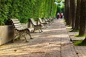 Park Bench By Park