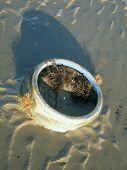 Pot In Sand