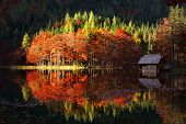 beautiful autumn landscape on a lake