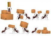 Paket Versand Versandhandel Karton Paket zu senden, von Ameisen