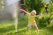 Funny Little Boy Playing With Garden Sprinkler In Sunny Backyard. Preschooler Child Having Fun With  poster