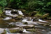 Long Exposure Of The River Flowing Through The Woods At Watersmeet In Devon poster