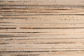 Timber At Work. Lumber Stockpiled. The Boards Are Stacked. Boards For Sale In Stock. poster