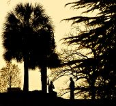 South Carolina Statehouse Sonnenuntergang