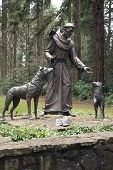Statue Of St. Frances Of Assisi