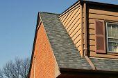 Home Repair Series - New Roof!