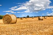 straw bales in irish countryside