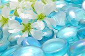 Delicadas flores brancas em pedras de vidro azul