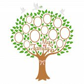 Family Tree Generation, Genealogical Tree With Photo Place Family, Community On Branch, Vector Illus poster