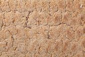 pic of wasa bread  - Close up of a crispbread with sesame seeds as a food background - JPG