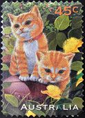 AUSTRALIA - CIRCA 1996: A stamp printed in Australia shows image of two cats circa 1996