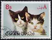 OMAN - CIRCA 1971: stamp printed in Oman, shows two black and white cat, circa 1971
