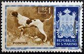 SAN MARINO - CIRCA 1956: A stamp printed in San Marino shows Pointer circa 1956