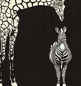 Inverse animal camouflage