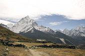 foto of sherpa  - sherpa farming village of dusa - JPG