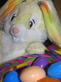 image of peter cottontail  - easter bunny with easter eggs - JPG