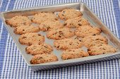 picture of baked raisin cookies  - Hot baked oatmeal and raisin cookies on cookie sheet with checked cloth background