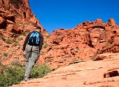Active Senior Man Hiking Desert Canyon