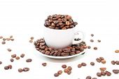 Coffee beans cup on white background