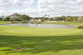 Golf Club Field With Pond