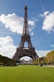 National Landmark Eiffel Tower Through Trees In Paris France