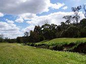 Australian Creek, Trees, Sky
