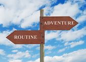 Adventure Vs Routine