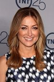 LOS ANGELES - JUL-24: Sasha Alexander kommt zu TNT 25. Jubiläums-Party im Beverly Hilton