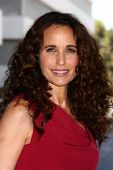 LOS ANGELES - JUL 24:  Andie MacDowell arrives at  the Hallmark Channel Summer TCA event at the Beverly Hilton Hotel on July 24, 2013 in Beverly Hills, CA