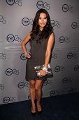 LOS ANGELES - JUL-24: Nadine Velazquez kommt auf TNT 25th Anniversary Party bei den Beverly Hilto