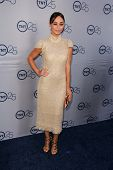 LOS ANGELES - JUL-24: Cara Santana kommt auf TNT 25th Anniversary Party im Beverly Hilton Ho