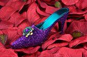 Glitter Shoe