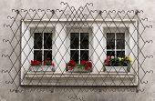 Ornate Window Security Bars