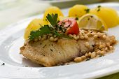 roasted pikeperch fillet with boiled potatoes , pine seeds