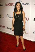 LOS ANGELES - NOVEMBER 09: Salma Hayek at the 2006 Partners Award Gala presented by Oceana at Esquire House November 09, 2006 in Los Angeles, CA.