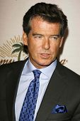 LOS ANGELES - NOVEMBER 09: Pierce Brosnan at the 2006 Partners Award Gala presented by Oceana at Esquire House November 09, 2006 in Los Angeles, CA.