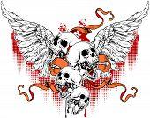 Angels Skull 16