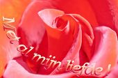 Realistic Red Rose Background And An Inscription In Dutch Vector