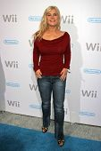 Alison Sweeney at the party celebrating the launch of Nintendo's Game Console Wii. Boulevard 3, Los Angeles, California. November 16, 2006.