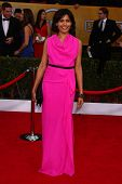 Freida Pinto at the 19th Annual Screen Actors Guild Awards Arrivals, Shrine Auditorium, Los Angeles,